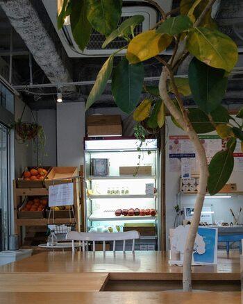 吉祥寺の生フローズンヨーグルト専門店「ウッドベリーズ」のマルシェ店は、フローズンヨーグルト以外にもフルーツを使ったパフェやサンドイッチなどが食べられると人気です。店内のショーケースには色とりどりのフルーツが並び、イートインスペースもあります。