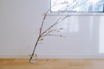 お花よりも長く楽しむことができる枝物は、一年を通していろいろな表情を楽しめる素敵なインテリアになります。種類によっては、一本でも様になるので、コストパフォーマンスも抜群。