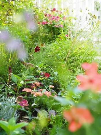 理想の庭に出会えそう。《庭を手入れしながら豊かに暮らす》手引きとなる本・映画
