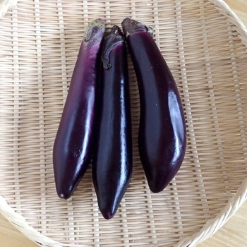 ▪長さ:20~25cmほど ▪品種:河辺長なす、大阪長なすなど  長なすは、関西や九州、東北で多く生産されています。長なすの中にも数多くの品種があり、それぞれの特徴がありますが、基本的に果肉はやわらかめ。煮物や揚げびたし、焼きなすなどがおすすめの調理法です。