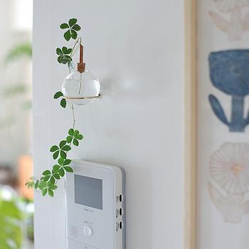 別売りのブラケットと組み合わせれば、壁掛けも可能。 Glasilium Vaseとマッチするよう、こちらも真鍮で作られています。