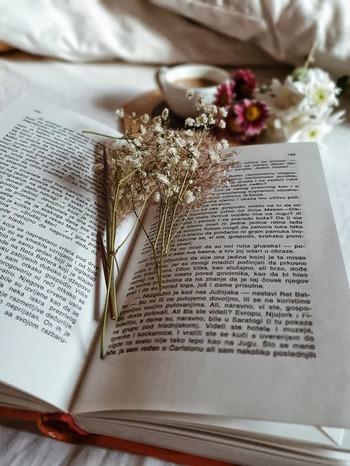 こだわりの「栞」を本に挟もう。お気に入りを見つけて読書をもっと楽しく♪