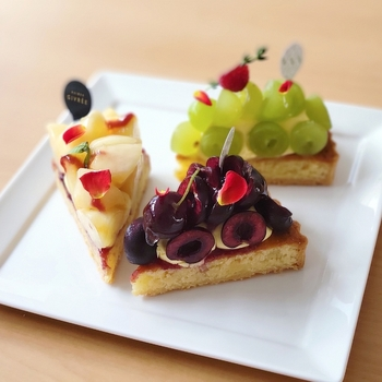 中央林間駅から徒歩5分の洋菓子店「メゾンジブレー」では、ケーキやジェラート、ドーナツやジャムなど、様々なスイーツが販売されています。色鮮やかなアイスケーキは、オンラインショップでお取り寄せも可能です。