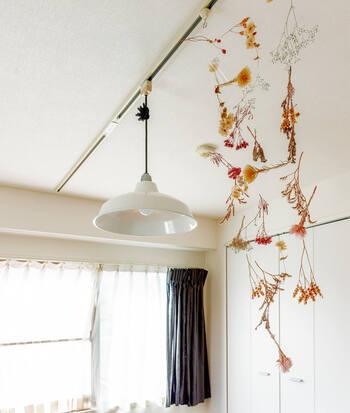 照明を取り付けるためのダクトレールは、モビールを飾るのにおすすめのアイテム。ダクトレール用のフックを使えば、簡単に吊り下げられます。