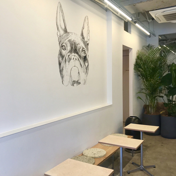 店内の壁には、フレンチブルドッグが描かれれています。制作は、ニュージーランド出身のアーティストであるBridget Tysonさん。穏やかな表情でお客さんを見守ってくれています。