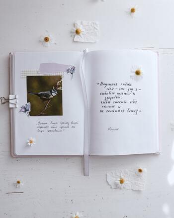 人生を1冊のノートに。コラージュで彩る「ライフログ」作りのヒント