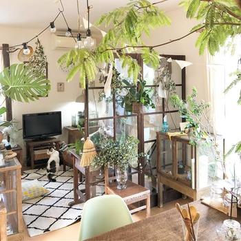 いたずら好きの猫ならば、植物を置いても遊んだり食べてしまったりという心配が。そういう時は猫が届かないように吊るして飾りましょう。こちらのインテリアは賃貸の戸建てなのですが、観葉植物とヴィンテージ家具でこれだけおしゃれにアレンジして自由に楽しむ事ができるんですね。