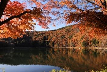 季節の移ろいを楽しむ。秋におすすめのキャンプスポット10選