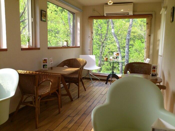 店内はまるで北欧の森の中にいるようなおしゃれな雰囲気。足元に渓谷を見下ろす眺めのいい席もあり、室内でも豊かな自然の気配を間近に感じられます。緑の季節はもちろん、紅葉や雪景色など、四季折々の彩りを堪能できますよ。