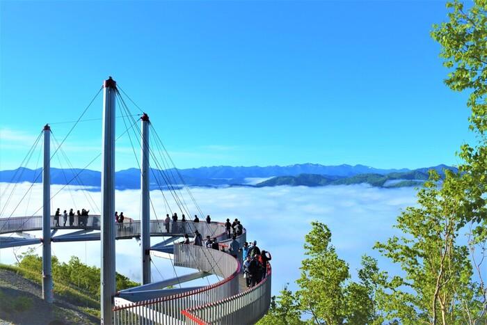 雲海テラスには絶景と一体になれる展望スポットがいくつもあります。また、冬の時期は周囲に霧氷が広がる「霧氷テラス」に生まれ変わるので、ぜひいろいろな季節に訪れてみて下さいね。