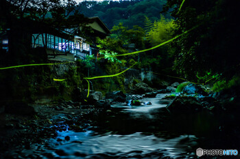 タイミングが合えば夜に訪れるのもおススメ!例年5月~6月には、渓谷の上を飛び交うホタルを見ることができます。川のせせらぎに耳を傾けながら、暗闇を優しく照らす明かりを眺めていると、自然と心が癒されますよ。