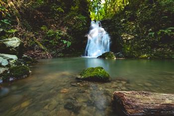 ウォーキングコースの見どころの一つは、高さ15メートル、幅5メートルの白滝です。青々とした木々と、その名前の通り真っ白に見える滝のコントラストが美しく、近くに佇んでいるだけで落ち着いた気分に。また、周辺にはバーベキュー場や温泉、広場などがあり、さまざまな楽しみ方ができます。