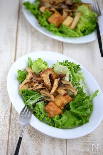 しっかり味付けをして焼いたエリンギや舞茸、厚揚げを生野菜にのっけていただくボリューム満点なのにヘルシーなサラダ。生野菜はレタス、グリンリーフなど葉物野菜や、大根や玉ねぎスライスなど、いただくメンバーやお好みで選ぶと良いかも。