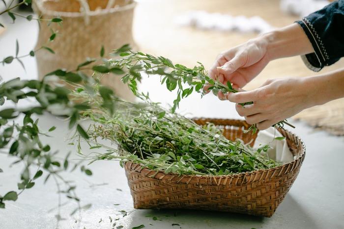 築100年を超える古民家の庭は、ベニシアさんが育てた200種類以上ものハーブでいっぱい。本書ではハーブのレシピや活用法についてもたっぷりと語られています。ベランダなどでガーデニングを楽しむ方にも参考になりますよ。