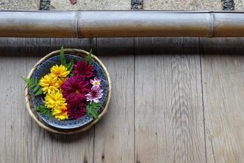 畑の野菜や山の野草などで作る精進料理はどれもおいしそう。眺めていると、やまと尼寺へ遊びに行ったような気分になれます。レシピも紹介されているので、おうちでチャレンジしてみてはいかがでしょう?