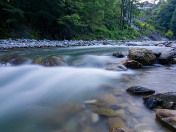 遊歩道を歩くと川のせせらぎが聴こえて、五感で涼を楽しめるのも奥多摩ならではですね。