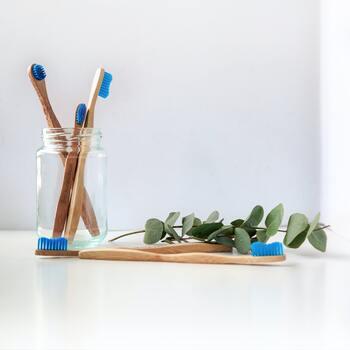 サステナブルの観点からも注目されている竹素材。竹は一般的な木材に比べて3〜5年も成長が速く、伐採しても環境を破壊することなく持続的な生産が可能です。耐久性が高いので、永く愛用していきたい家具などにもよく使われています。