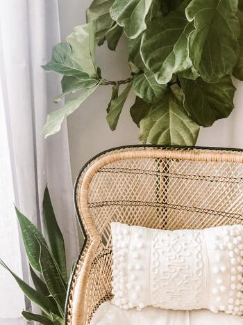 ナチュラルな優しい風合いを持つ竹素材のアイテムは、主張が少なくどんなお部屋にもナチュラルに馴染むところが特徴。和室にも合うのはもちろん、北欧系やリゾート系など、さまざまインテリアに合わせられます。  家具や雑貨が必要だけど、インテリアのテイストが定まっていない…という方は、竹素材を選んでみてはいかがでしょうか。