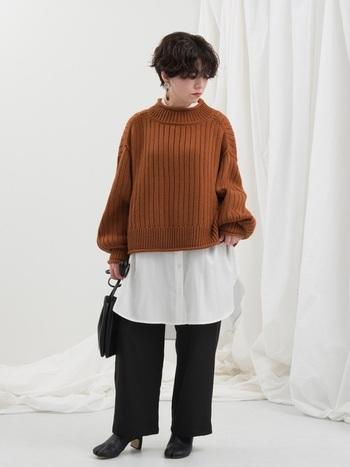 赤みのあるブラウンやレンガ色がオータムタイプによく似合います。冬はぜひ上着やセーターに取り入れてみてください。季節感のある着こなしを思いっきり楽しむことができますよ。
