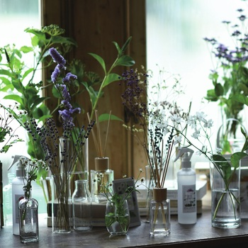 お部屋で、出先で、癒やしの香りを。ゆらぎがちな心身のメンテナンス術