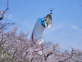 また吹田市には、大阪万博公園をはじめ、緑豊かな公園が点在しています。大阪中心部へのアクセスがよい一方で、自然にも触れながら暮らすことができ、都会と郊外のいいとこどりができるのも魅力。引っ越し先に悩んでいる時や、住みたい街に悩んでいる時にも、真っ先におすすめできる場所です。
