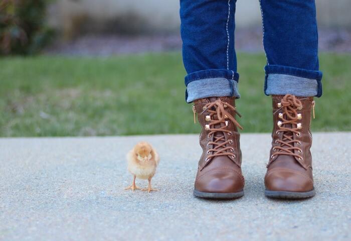 かかとからつま先までの長さだけでなく、足の甲の部分にも注目して、隙間がなるべくない靴を選びましょう。靴擦れを防ぐには、足にぴったり!が選ぶときのキーワードです。