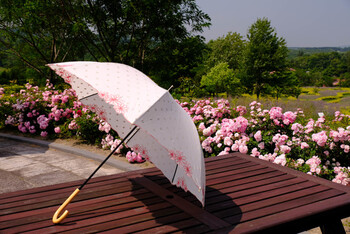 帽子にアームウォーマー、日傘など紫外線をブロックするアイテムはたくさんあります。それでも露出してしまう部分や紫外線が気になる方は、日焼け止めを併用するのが一番だと思います。